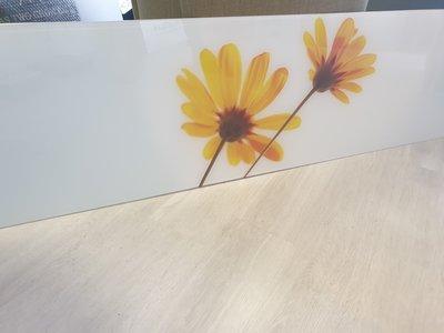 Premiumglas spatwand Yellow Daisies